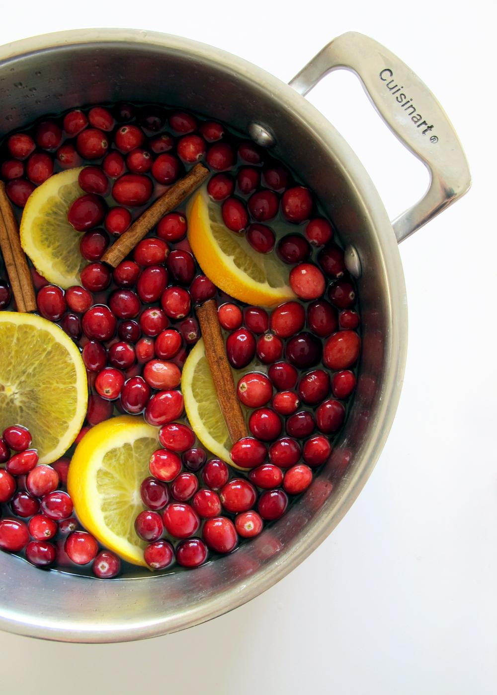 a classic cranberry and cinnamon potpourri
