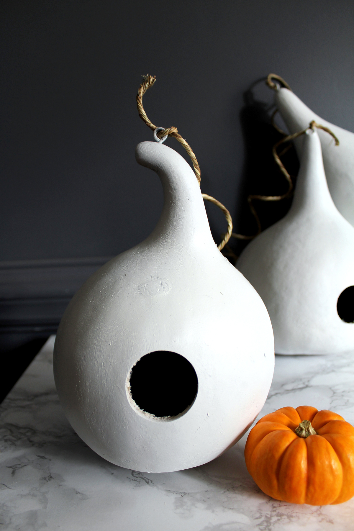 how to paint birdhouse gourds