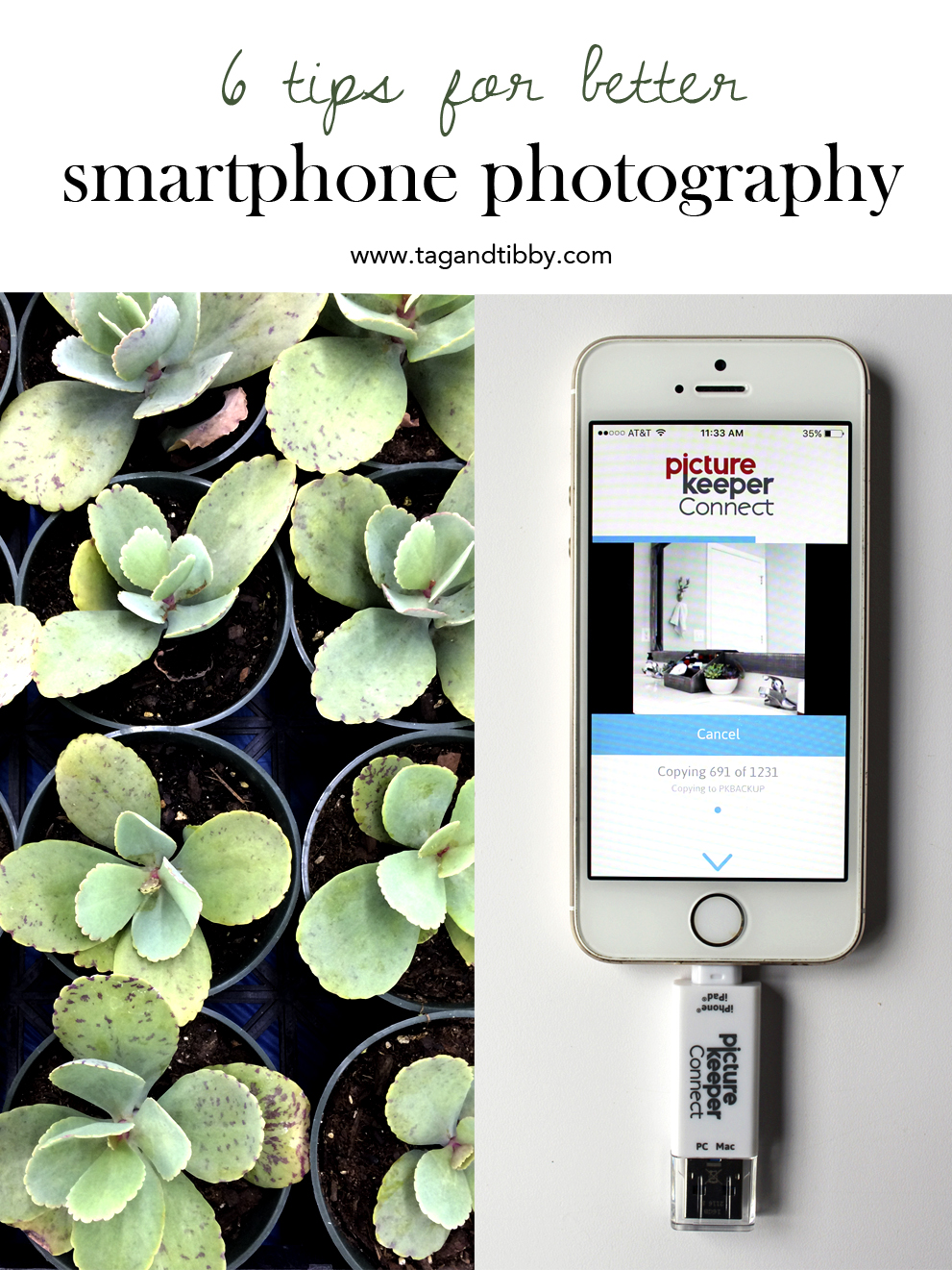 Tips for Better Smart Phone Photography