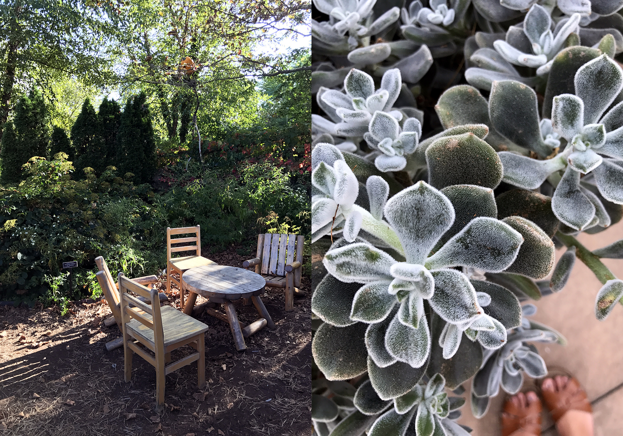 New York Botanical Garden | a BHG Stylemaker Recap