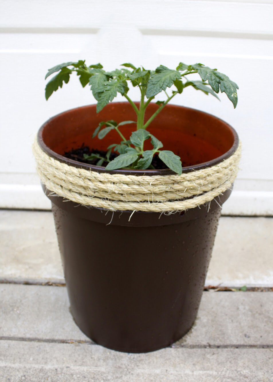 how to make a planter from a 5 gallon bucket | Top 10 Articles of the Year on Tag & Tibby