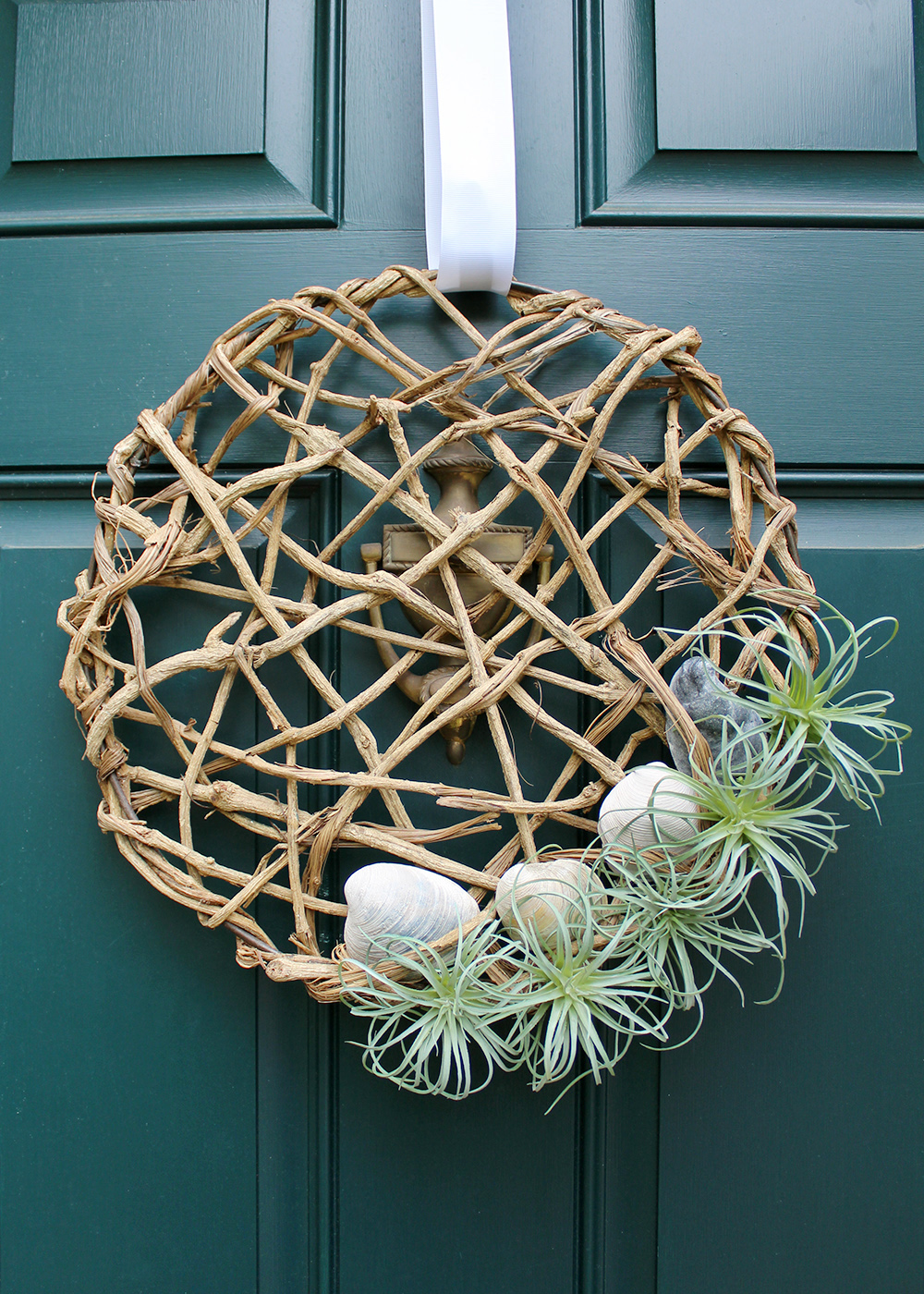 how to make an air plant wreath with seashells for $25 #summerDIY #creativewreath