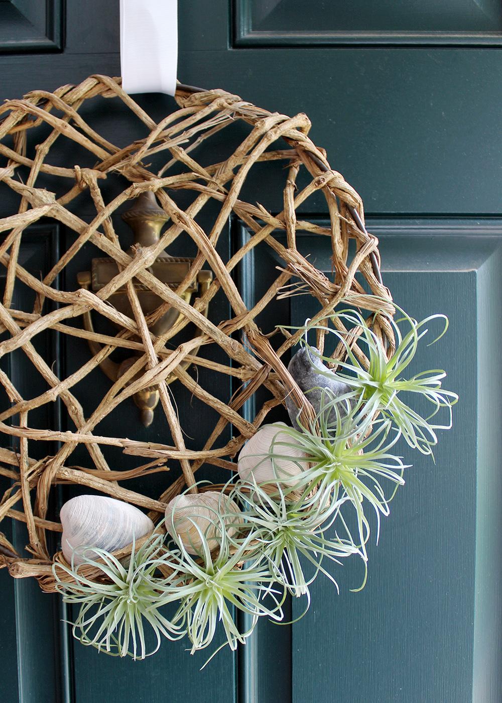 make an air plant wreath with seashells for $25 #summerDIY #creativewreath
