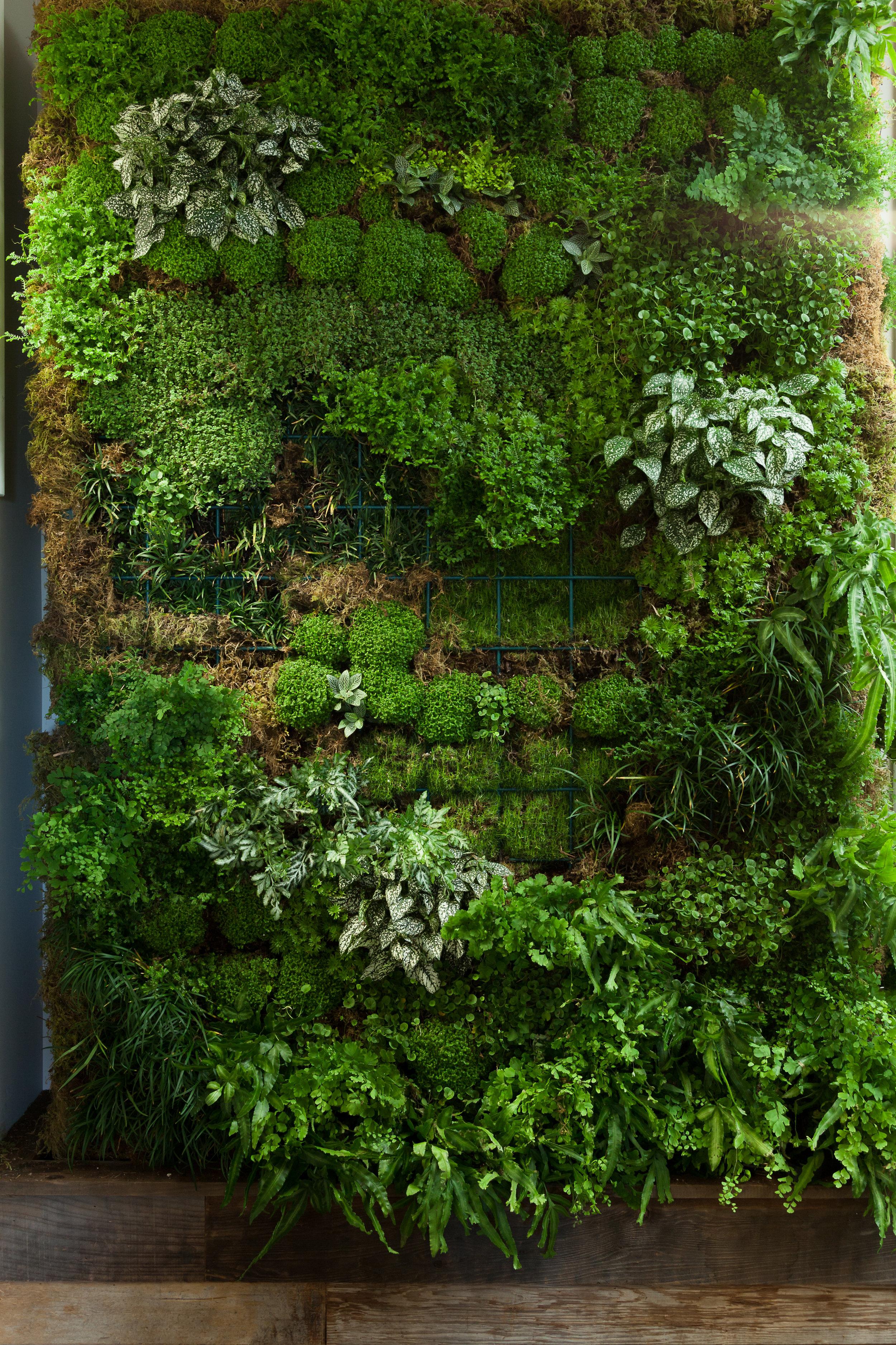 EBCON - Creative Walls - HiRes-3691.jpg
