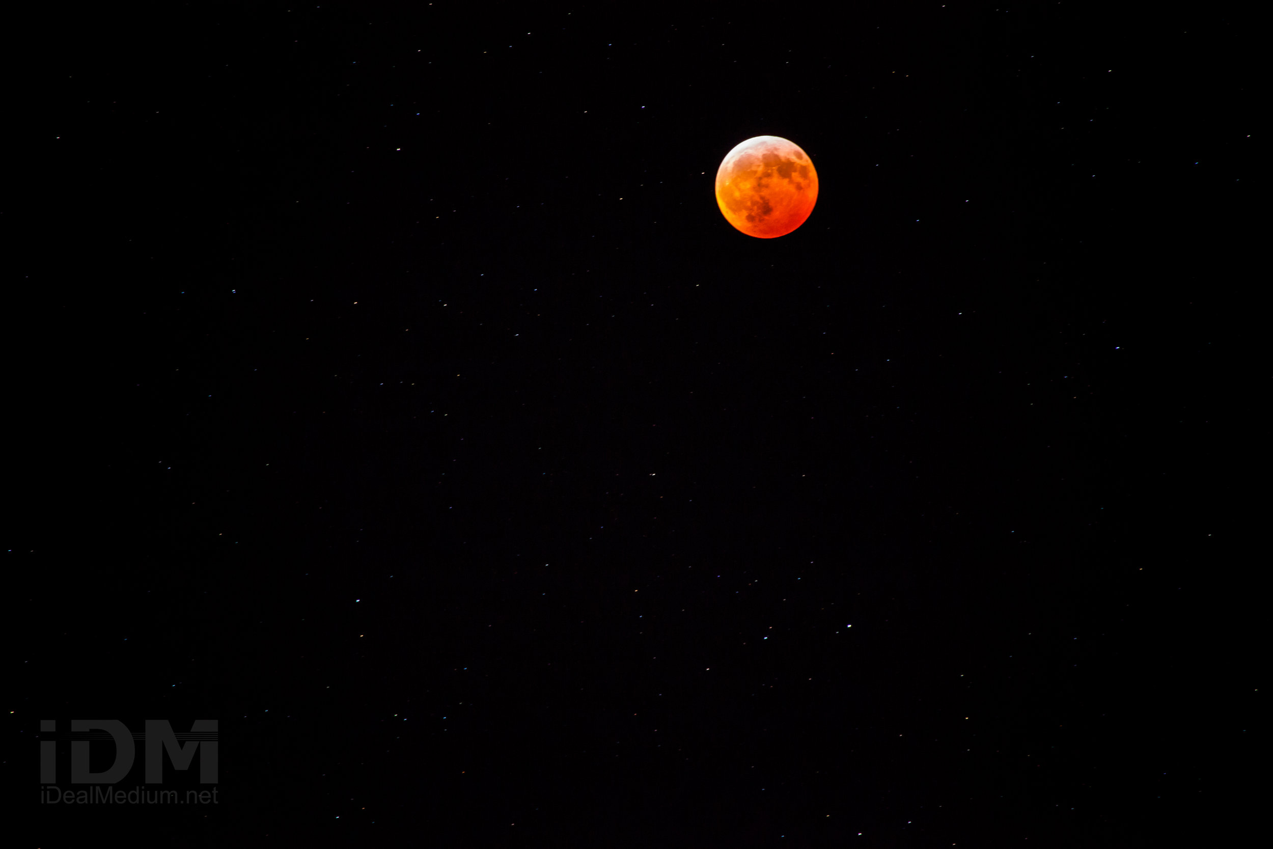 Wolf_moon-3.jpg