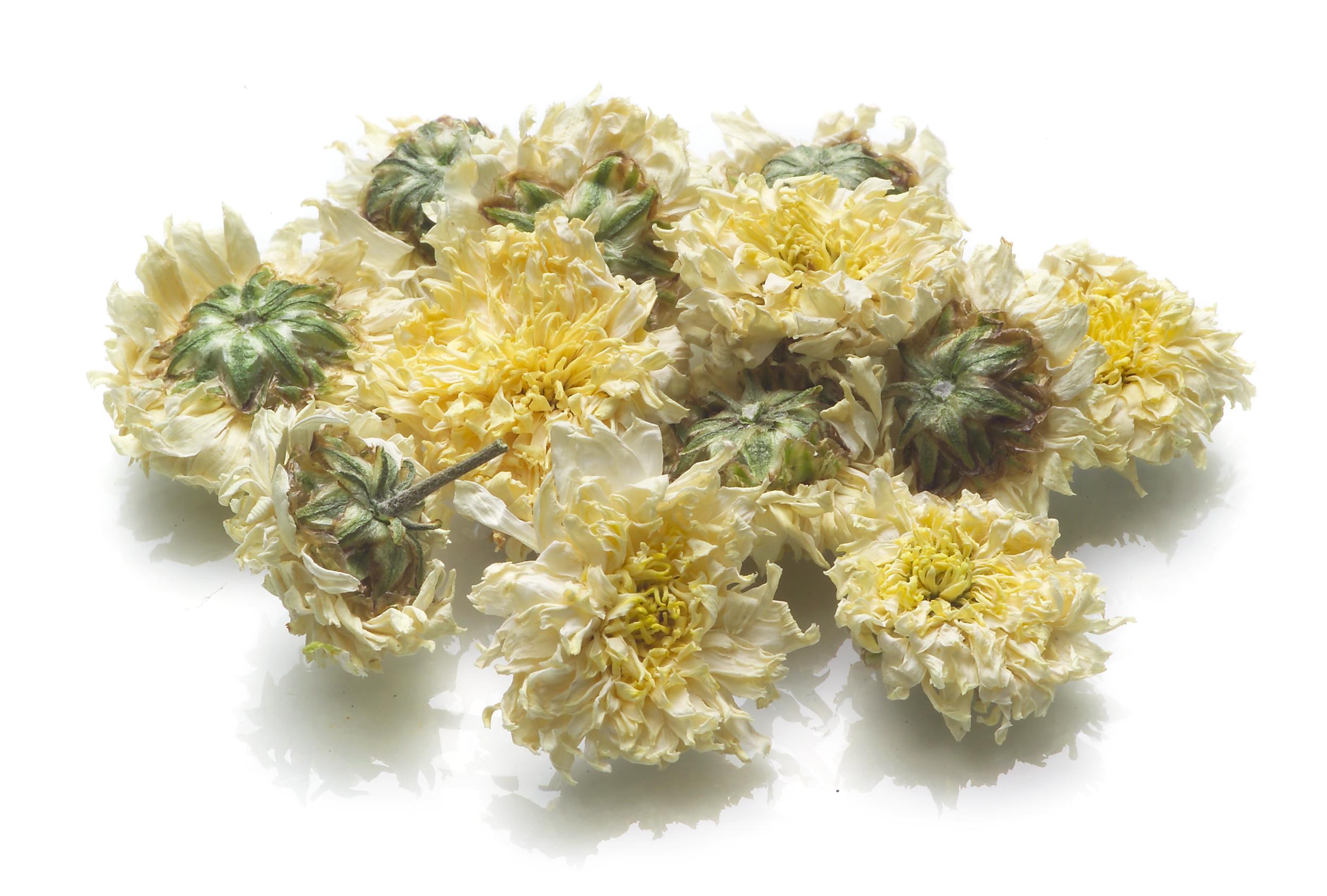 Chrysanthemum-Flower Image.png