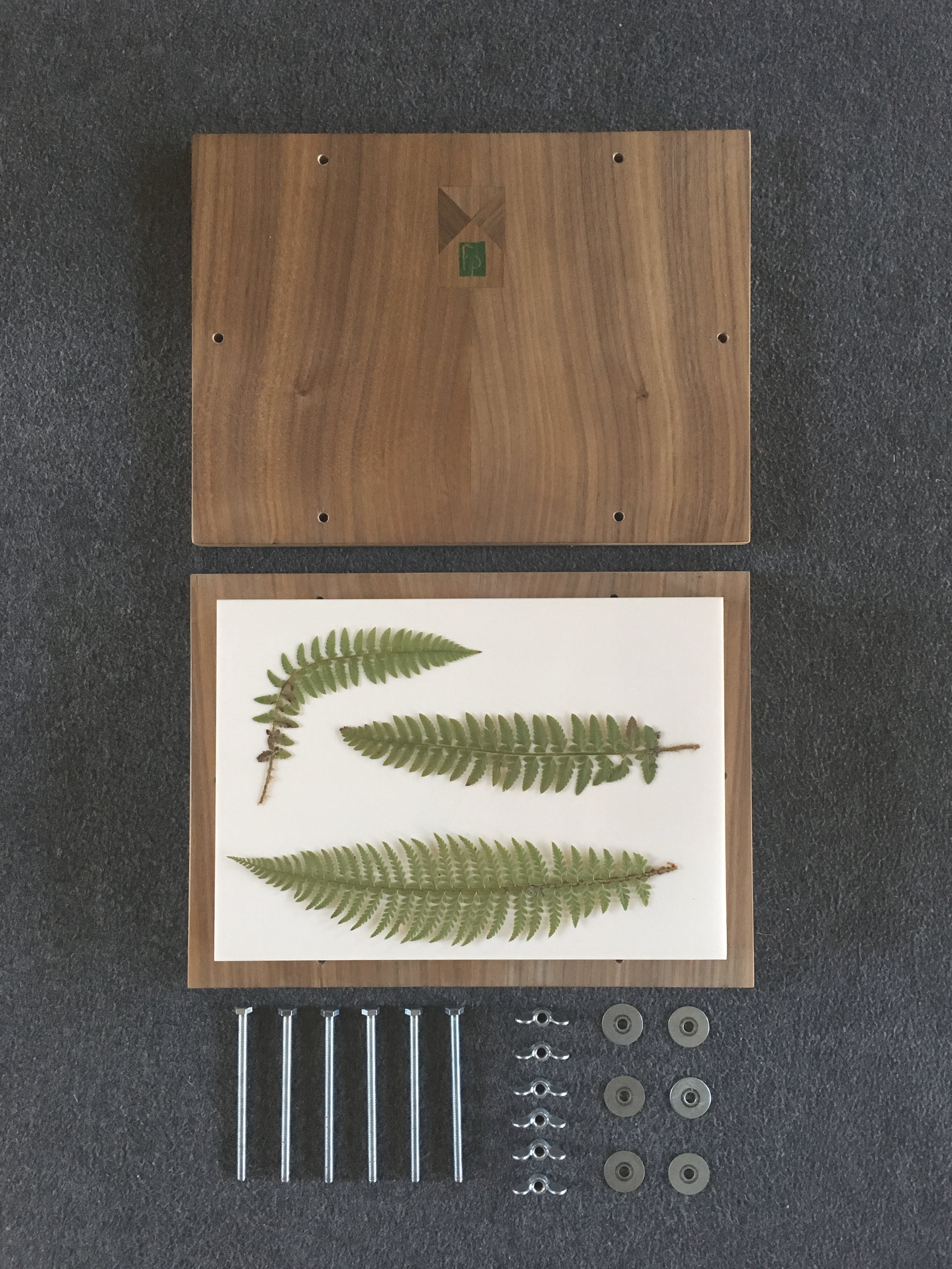 herbarium essentials - Start your own personal herbarium with these custom-designed, handmade plant presses and other essential supplies.