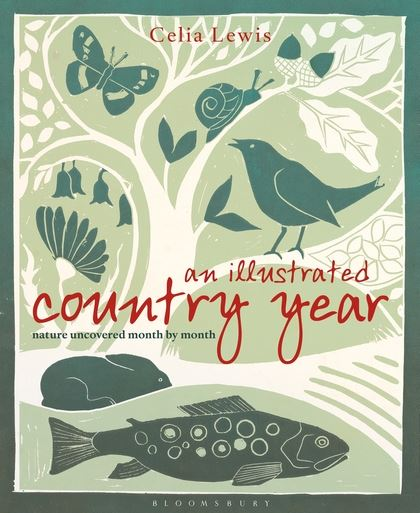 An Illustrated Country Year - Nature uncovered month by month