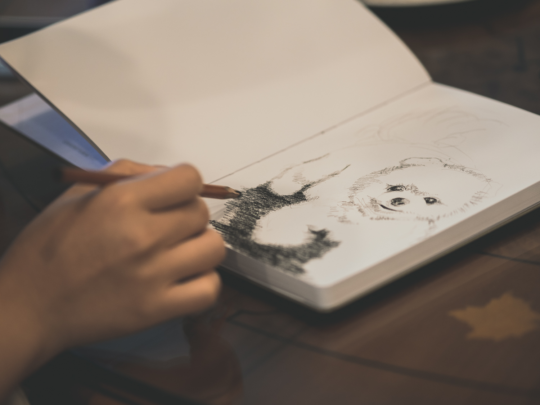 pomeranian-art-drawing.jpg