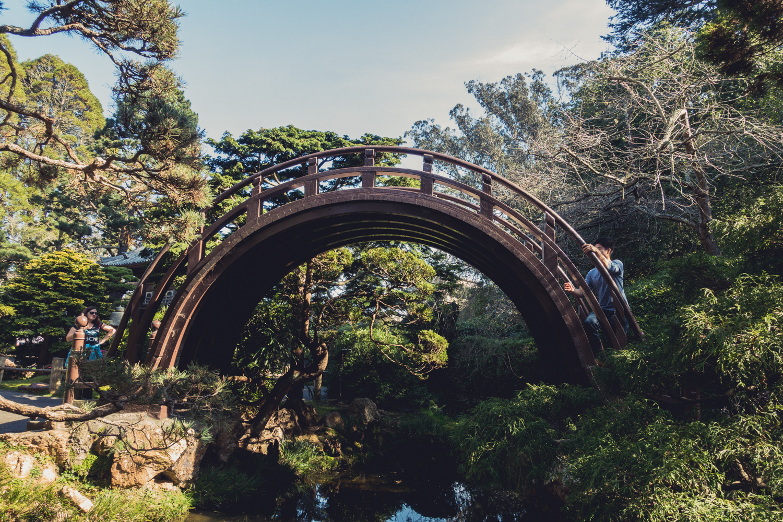 golden-gate-park-japanese-tea-garden.jpg