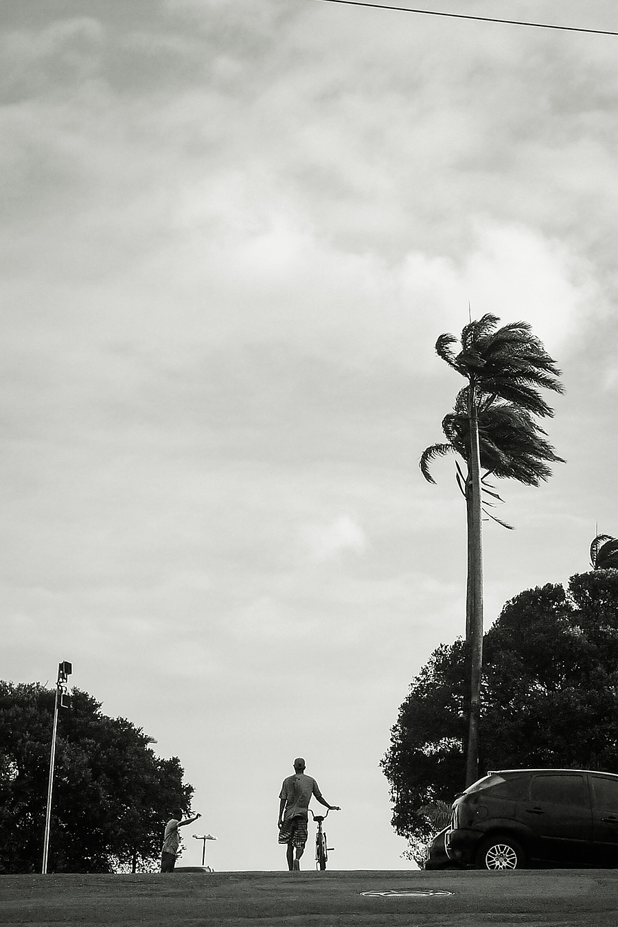 MLM 2010_ Bahia baja.jpg