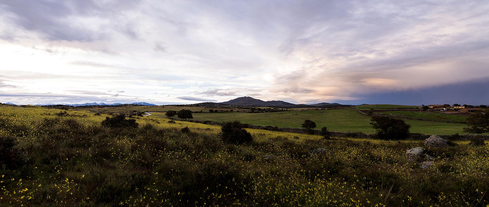 MLM 2016_ Panoramica campo-1 Panorama.jpg