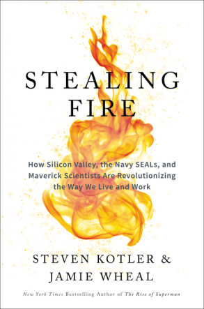 Written by Steven Kotler & Jamie Wheal. A body of research on peak states and flow.