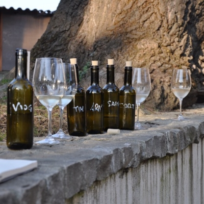 ➝ Our Wine -