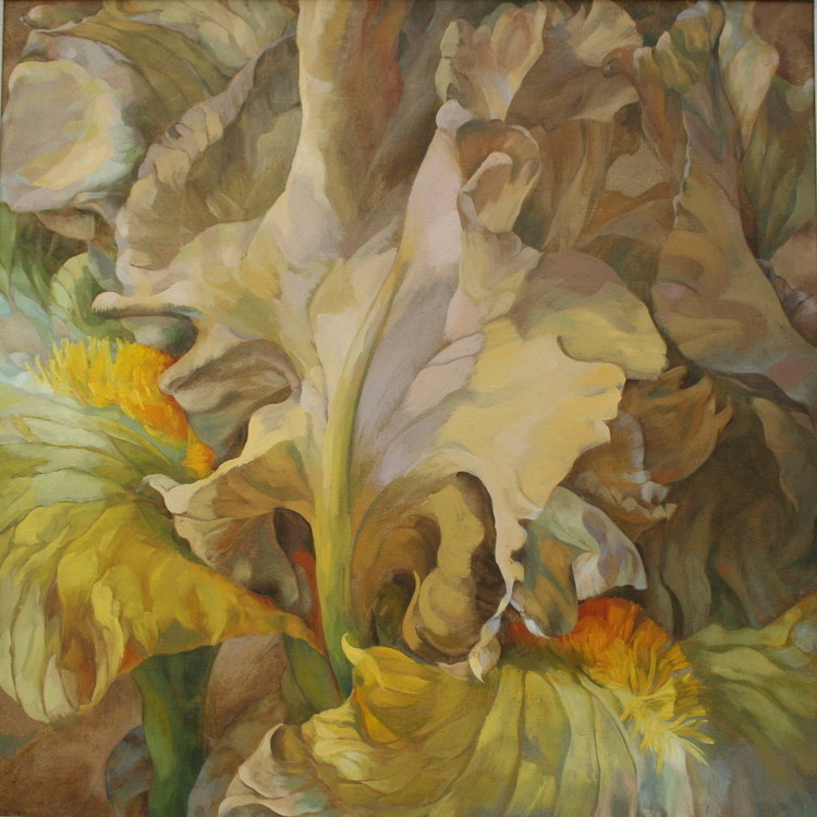 b.Jean+Cayeux,+iris,+oil+on+canvas,75x75cm.jpg