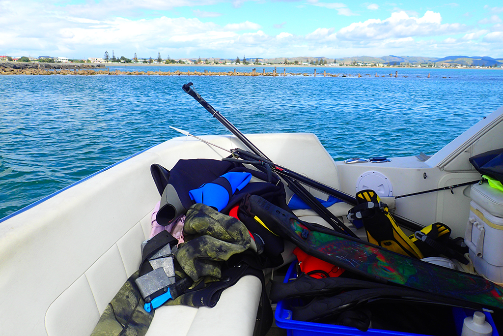 Fishing, free-diving, and feasting with a local in Hawke's ...
