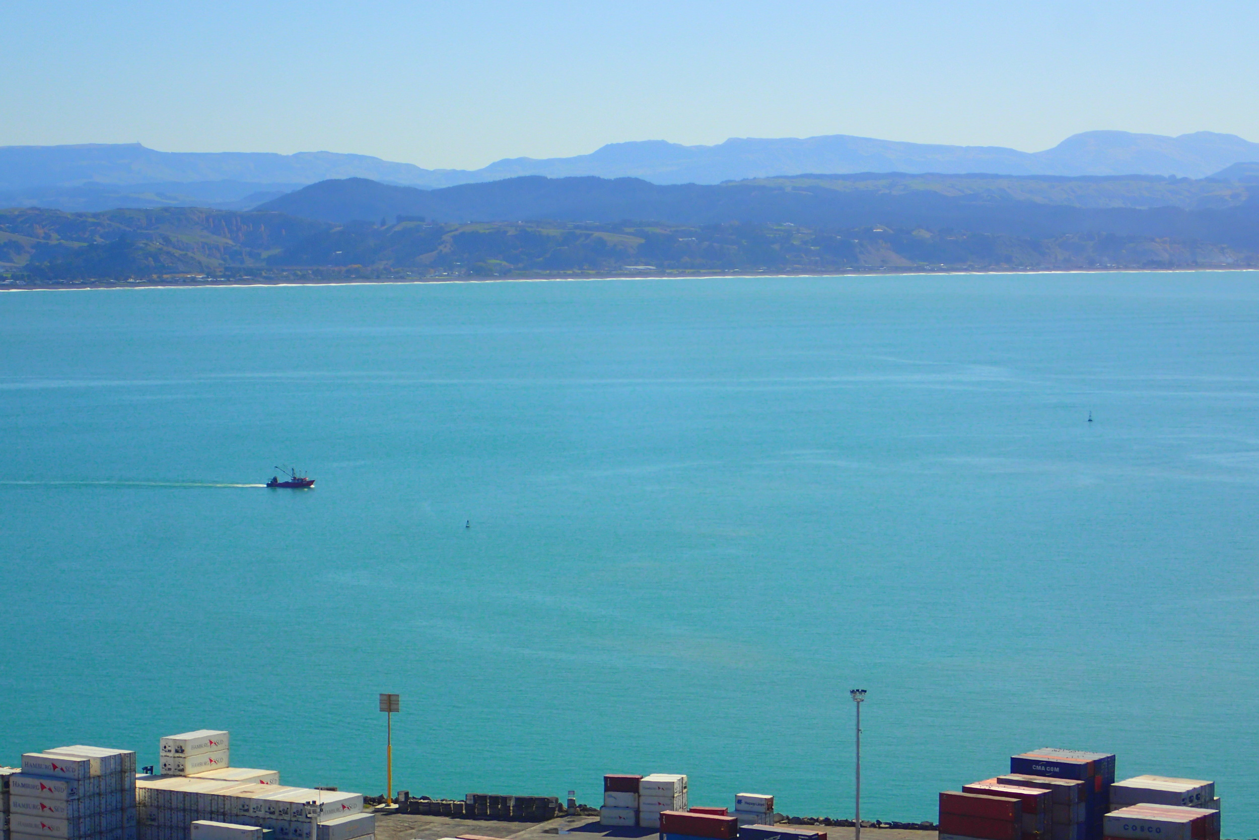 There's a thriving fishing industry from the Port of Napier