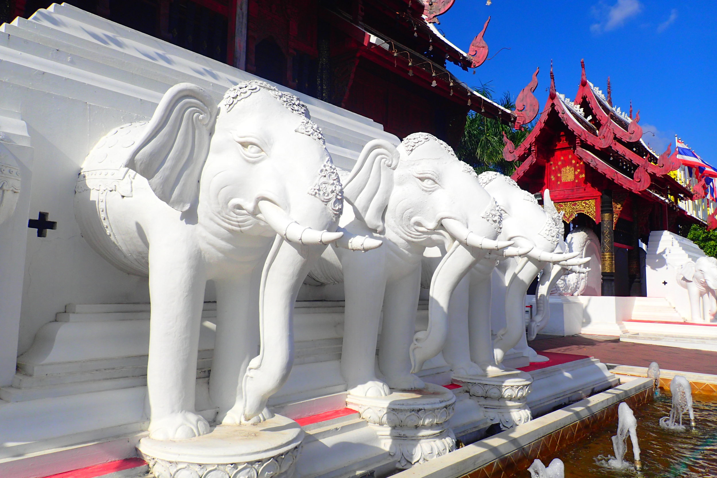 Elephants are a symbol in Thai cultural, held in high esteem despite their mistreatment for tourism purposes