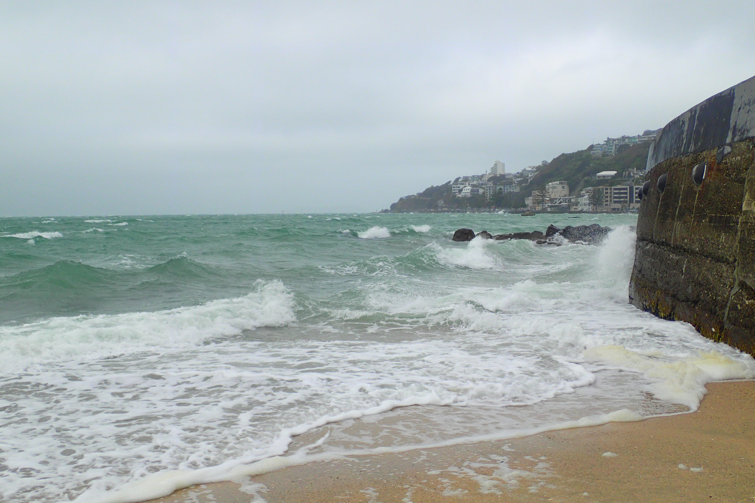 Big waves are common in the windy city of Wellington