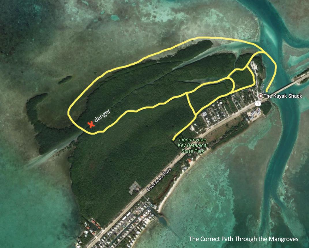 mangrovekayakcorrect.png