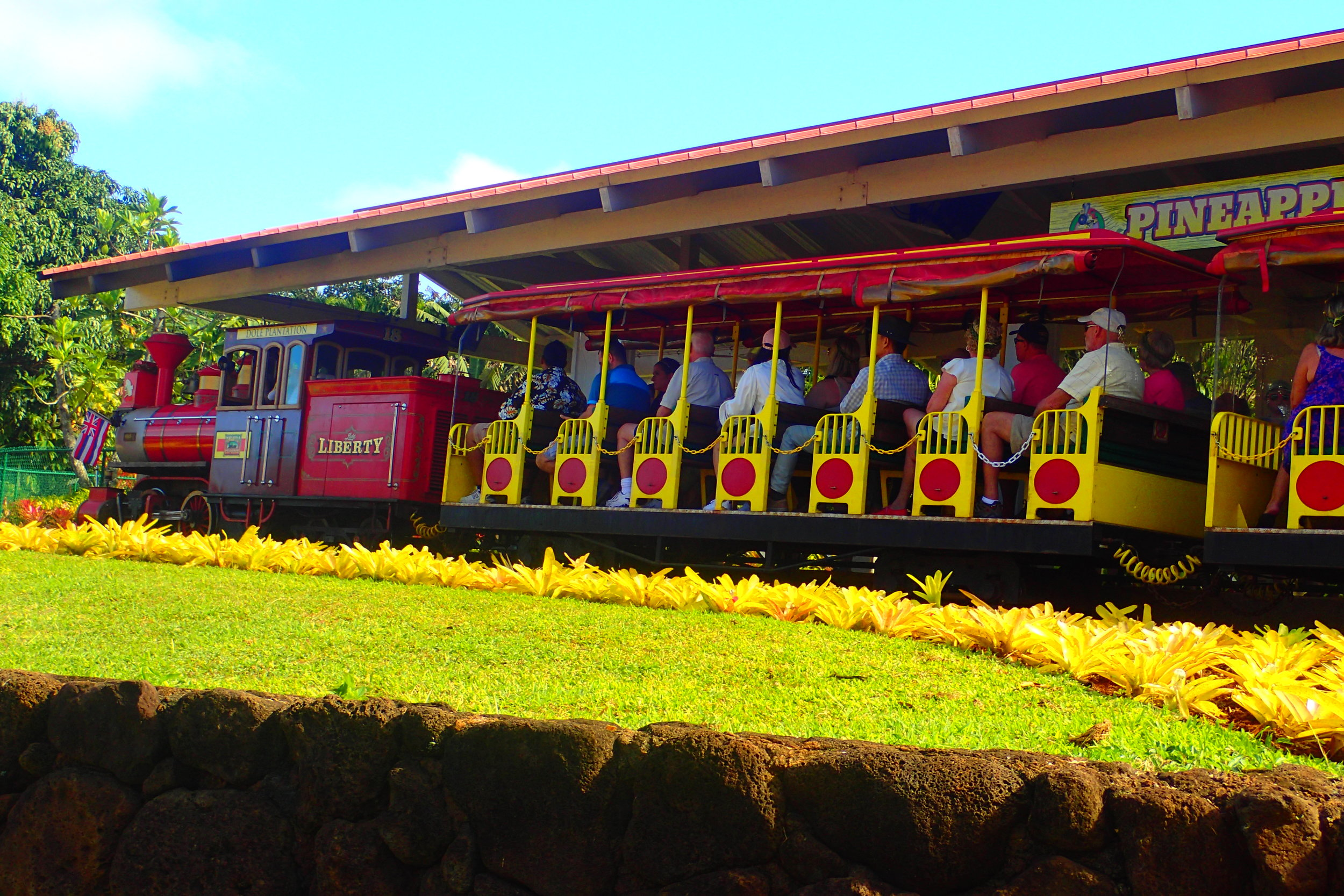 The World's Largest (Pineapple) Maze at Hawaii's Dole ...