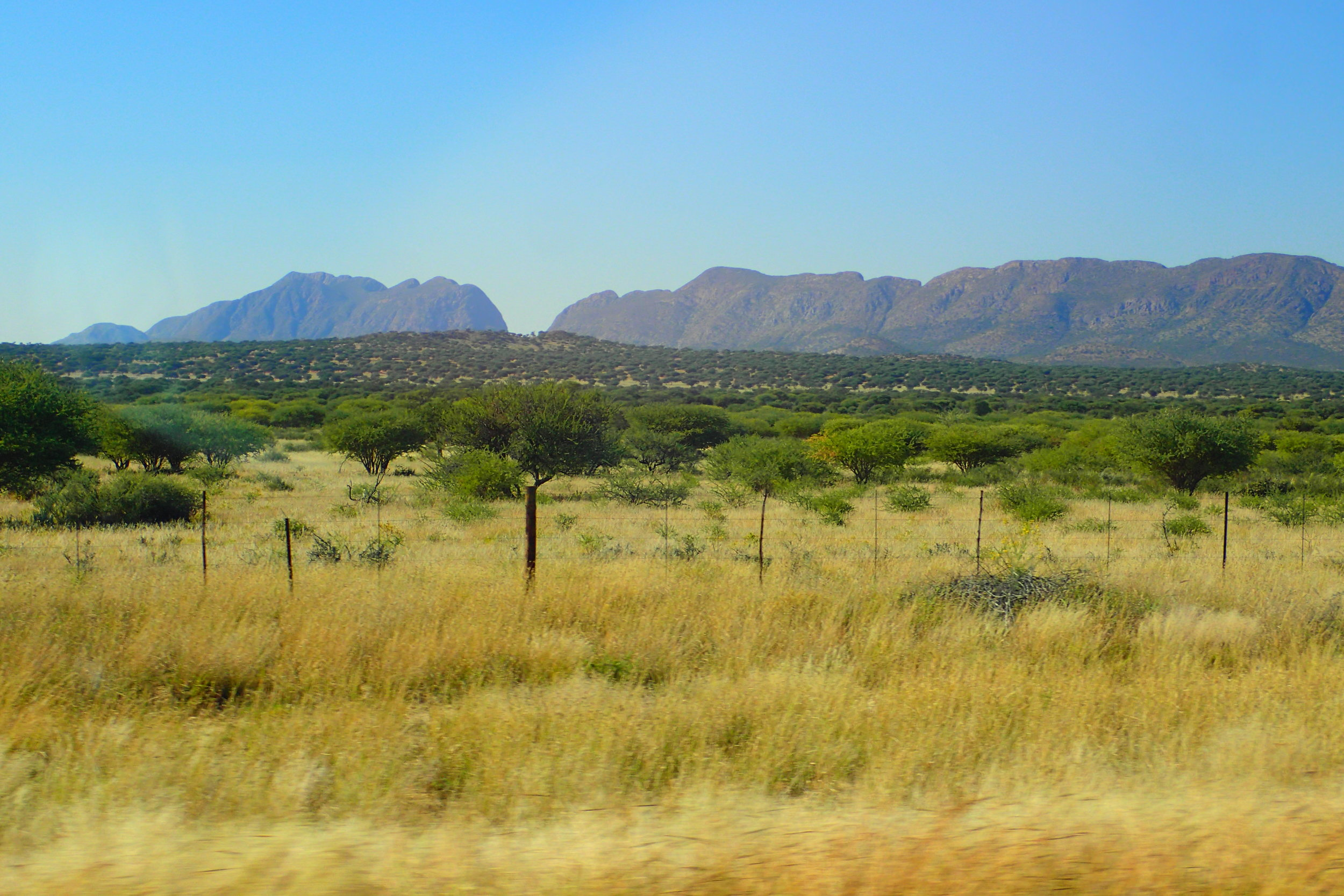 Half of Namibian land is devoted to agriculture