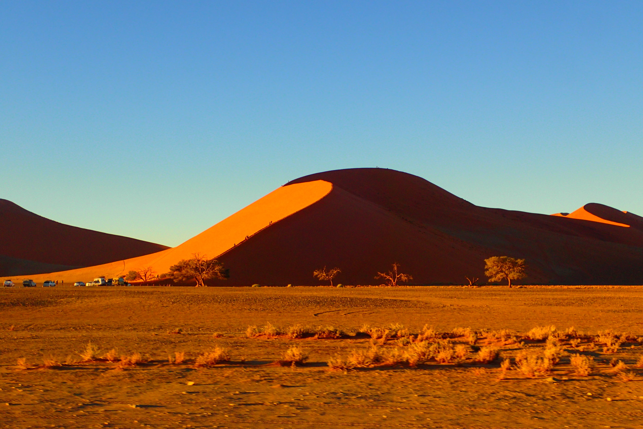 Dune 45 after sunrise