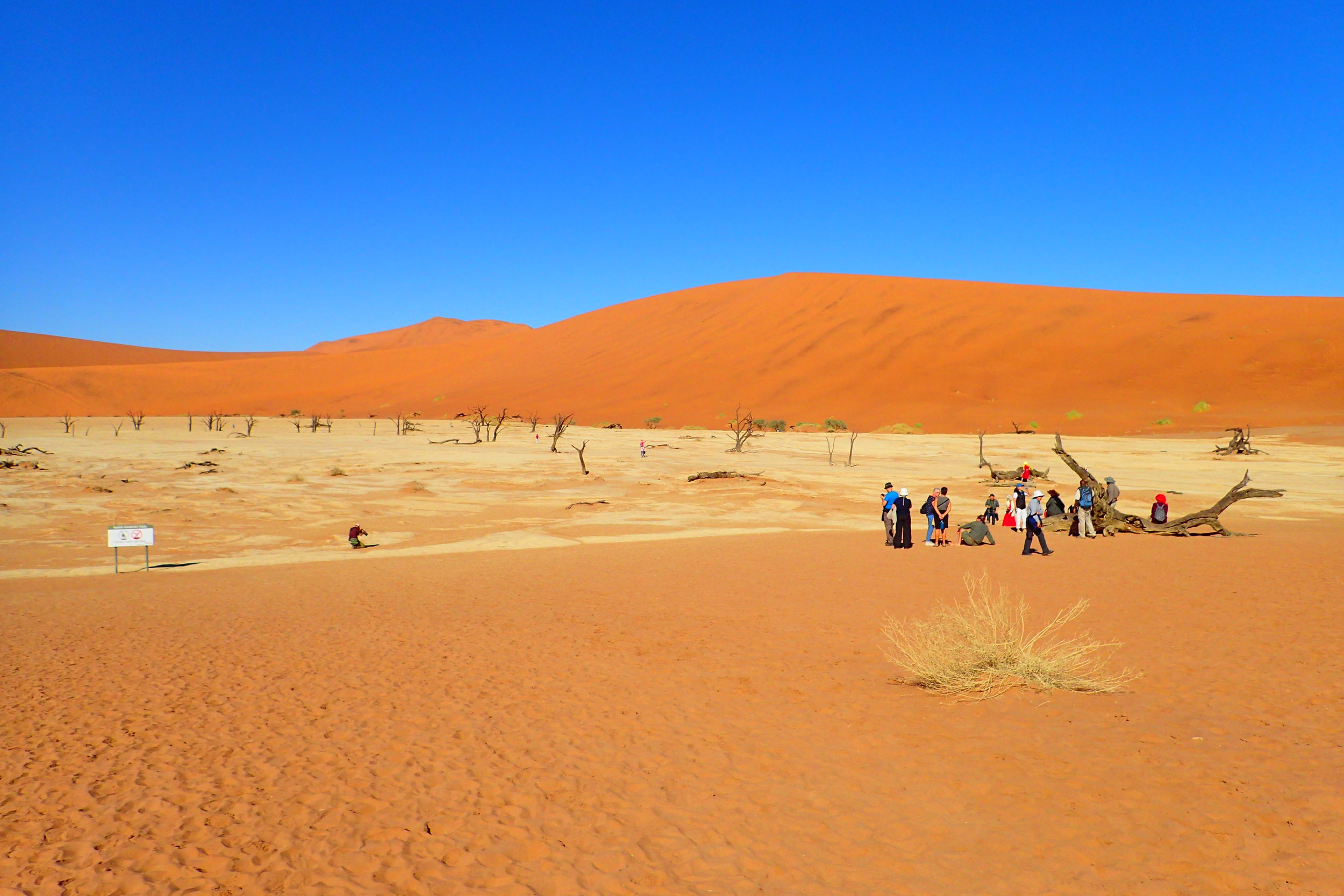 Tourists at Deadvlei much later in the morning