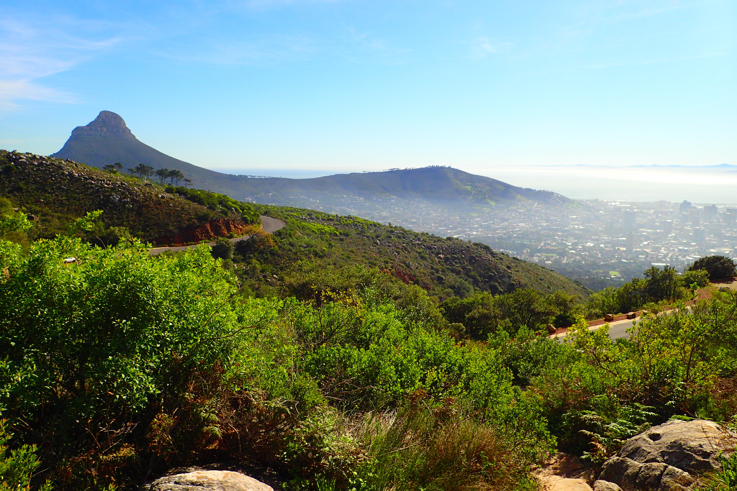 View from bottom of trail of Cape Town, Lion's Head, Signal Hill and ocean beyond