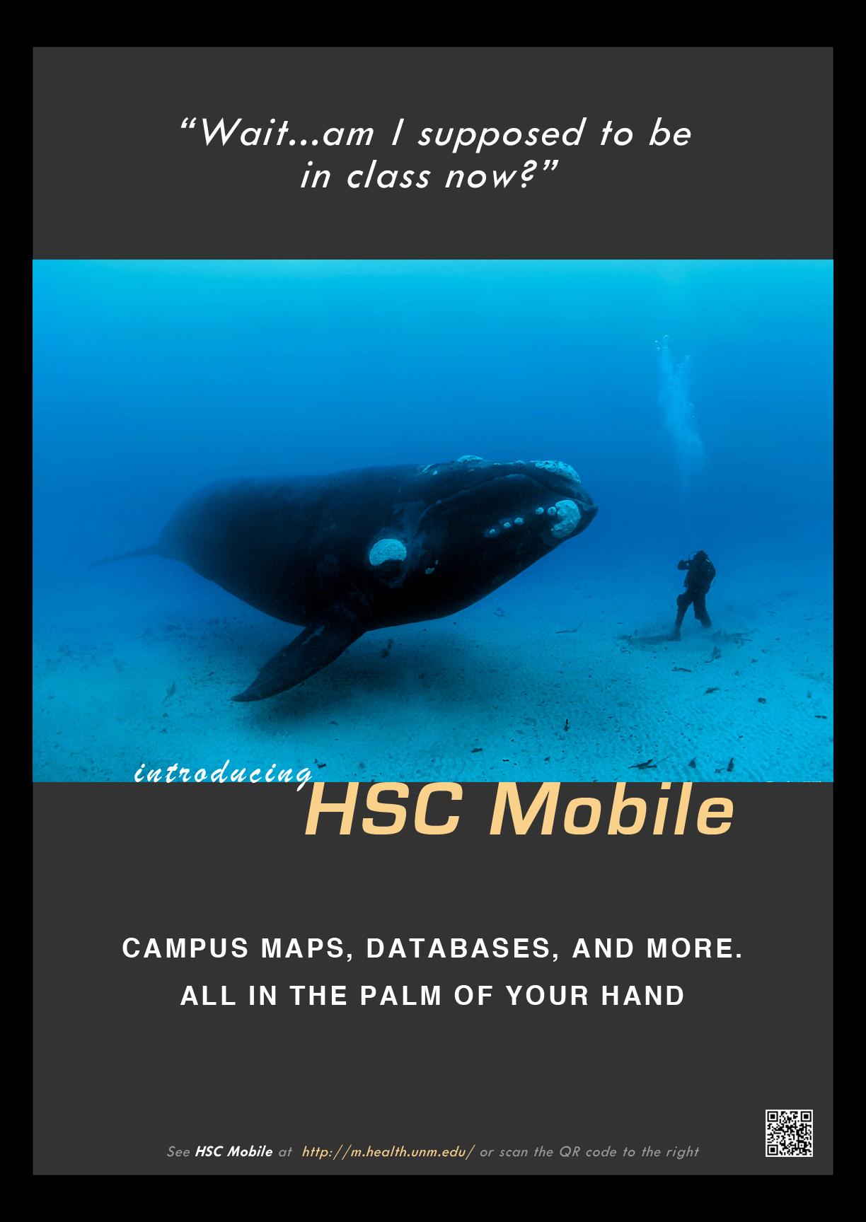 HSC-poster-whale2.jpg