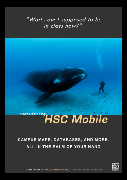 HSC-poster-whale.jpg
