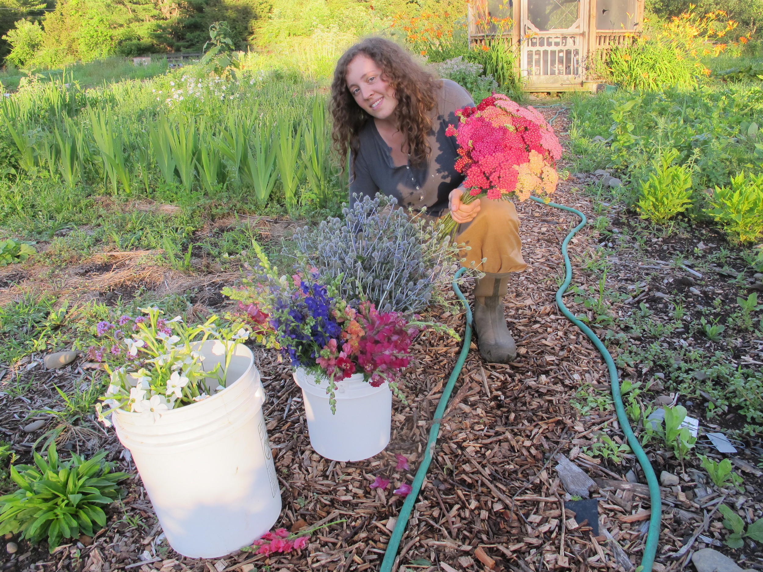 Mary Beth's beautiful cut flower garden