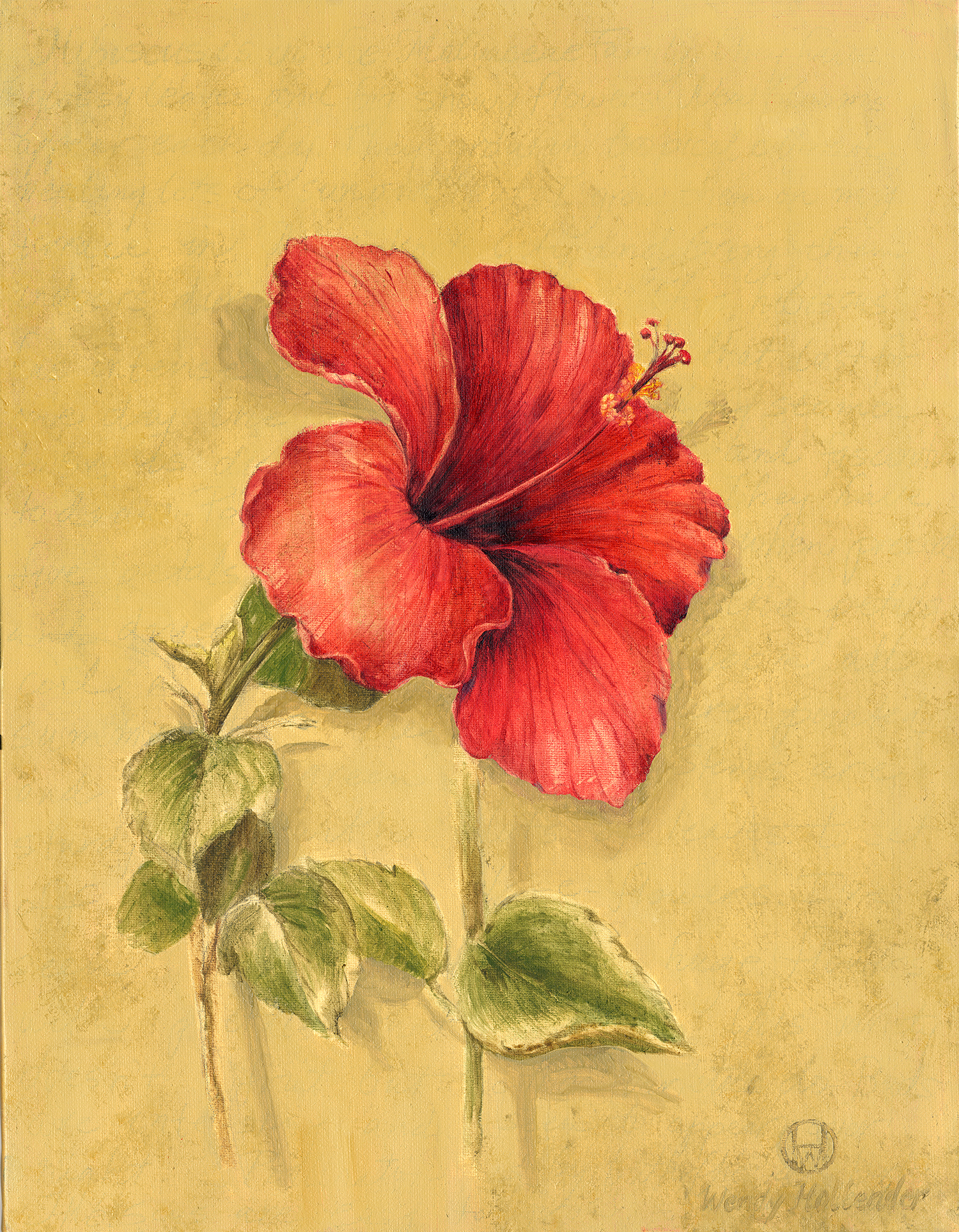 Red Hibiscus1.jpg