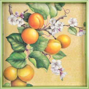 Apricot Tray