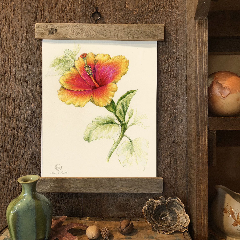 Botanical Artist Illustrator Learn To Draw Art Books Art Supplies Workshops