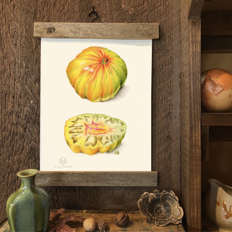 Copla Tomato