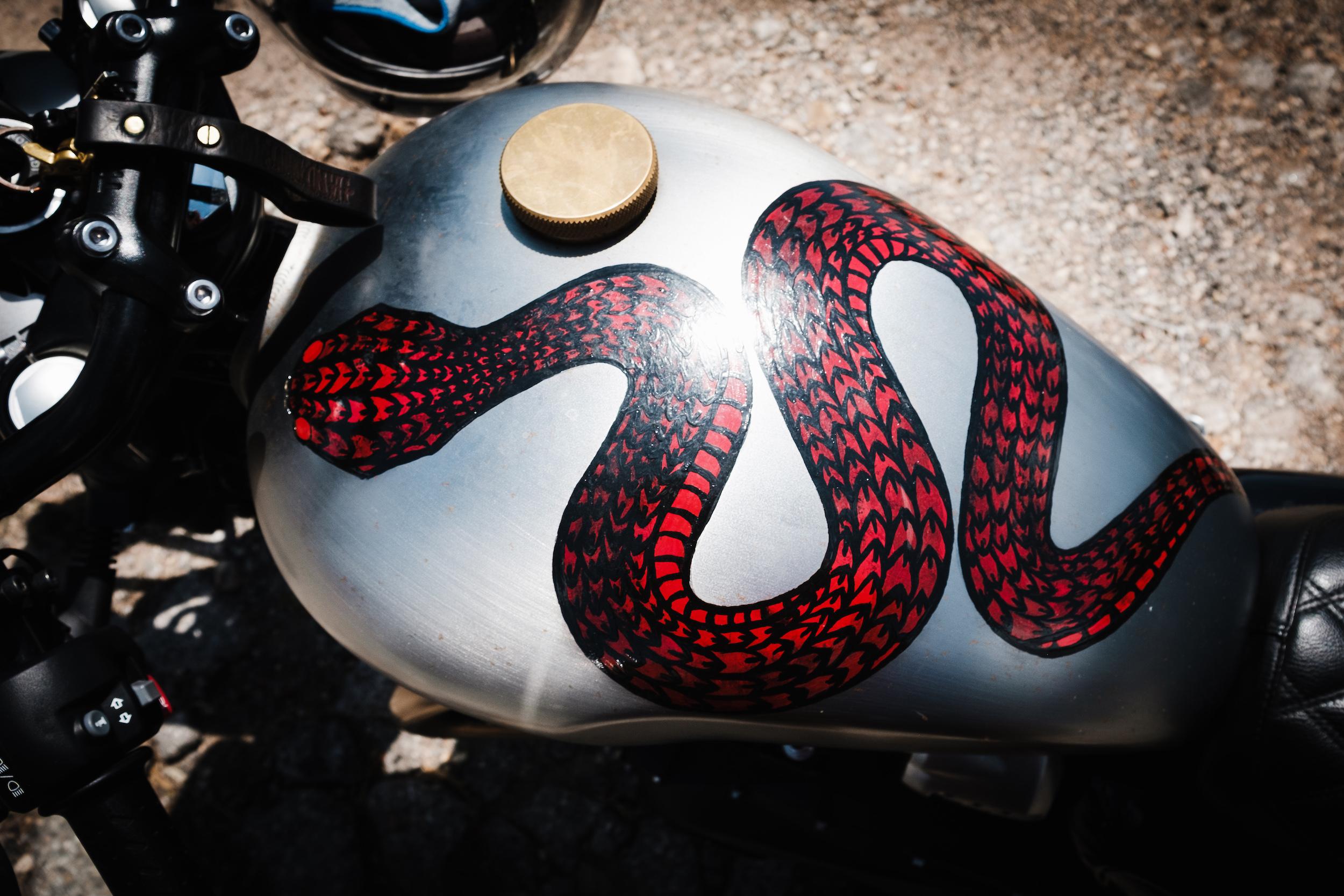 snake_tank.jpg