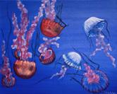 """Jellyfish?"""