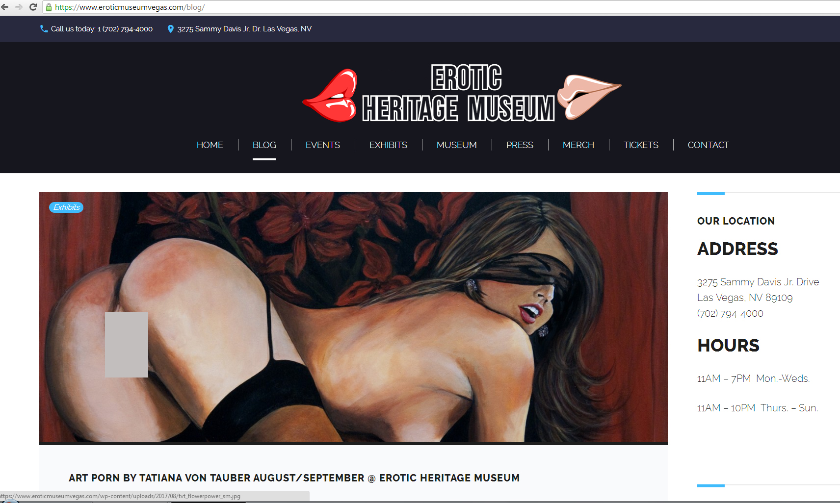 EHM_blogscreenshotcensored_tvt.jpg