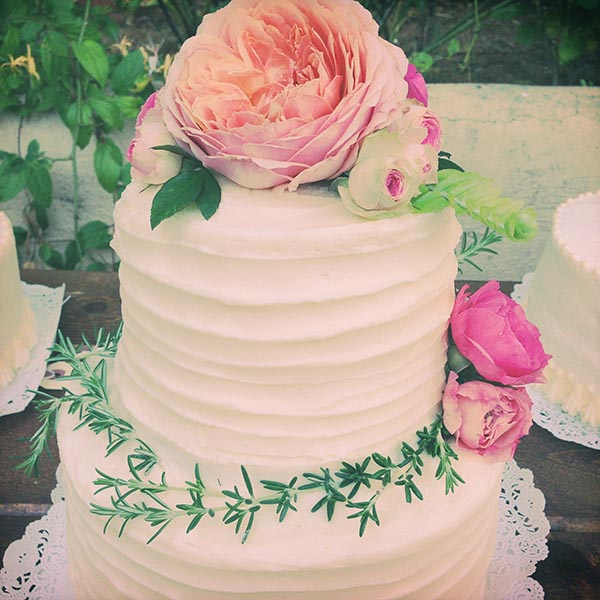 Main Cake-small.jpg