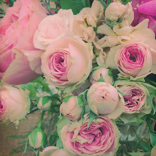 rosebouquet-small.jpg