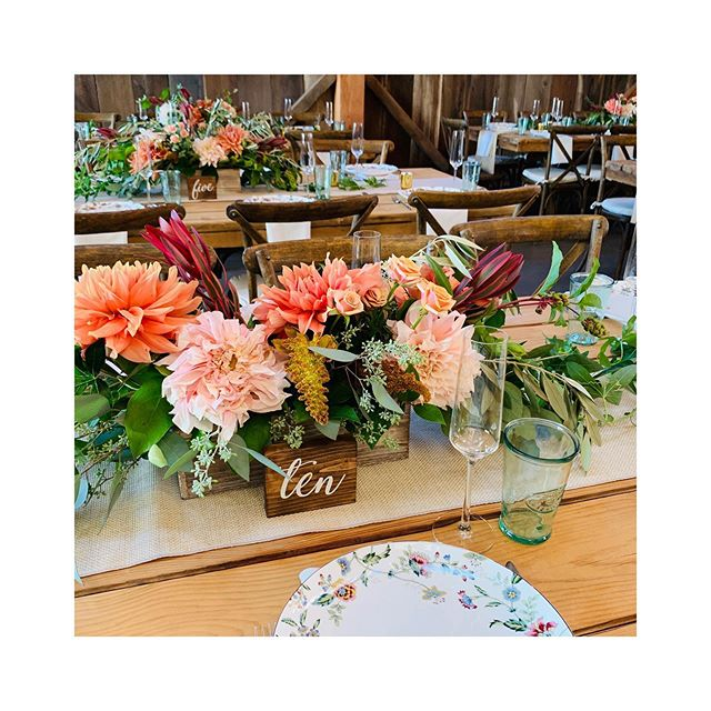 Dahlia season is the best 🌸 . . . #eventplanner #weddingplanner #santacruzeventplanner #heidirayevents #bayareaeventplanner #weddings #barnwedding #ucscbarn #ucscfarm #ucscfarmwedding #santacruzwedding #ucscfarm #fallwedding #dahlias #boho #bohemianwedding #dahlia #farmwedding