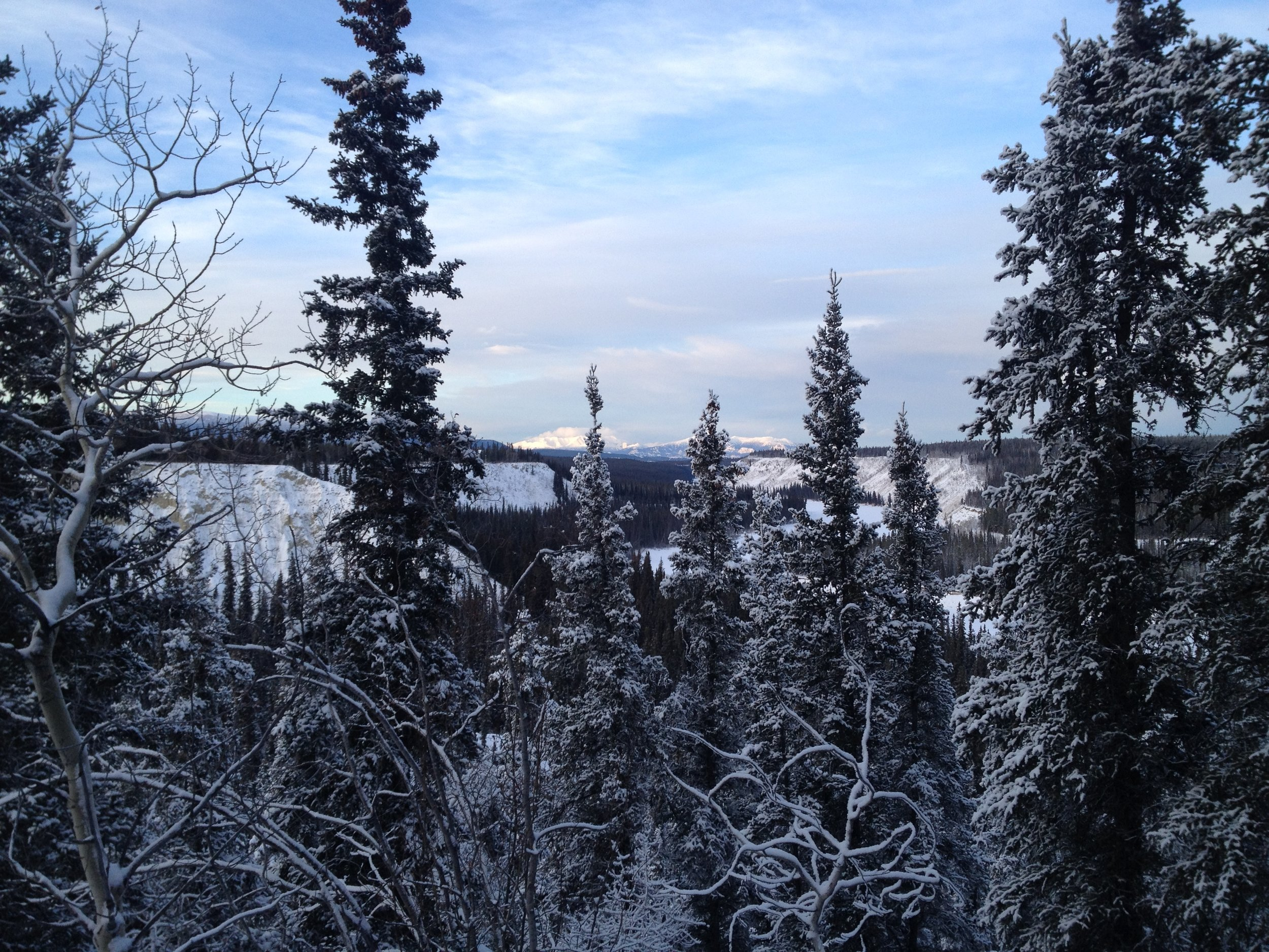 Beautiful views from a walk in Whitehorse over the Christmas holidays.