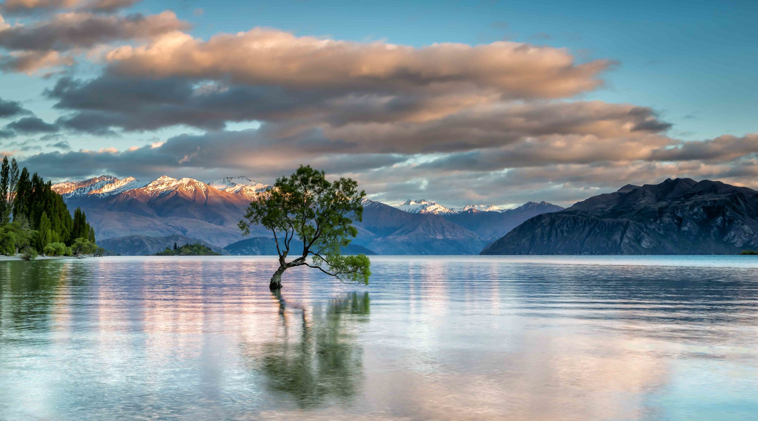 A photo of arguably the most photographed tree in New Zealand at Lake Wanaka. Everyone else takes one so why can't I!