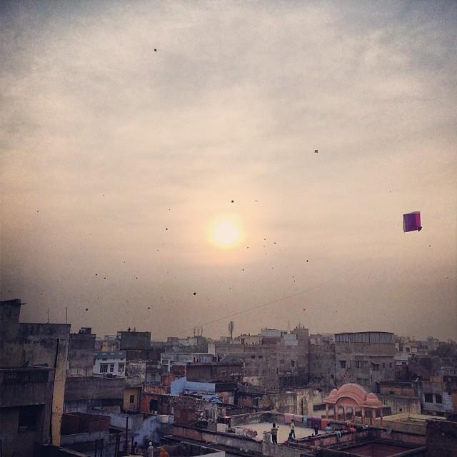 Jaipur Kites