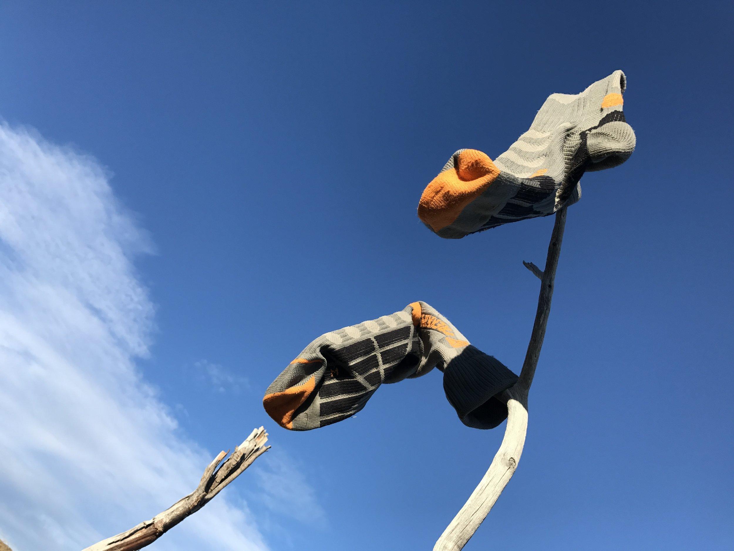 socks in the wind