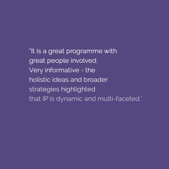 Software Start-up Founder