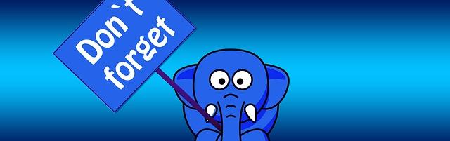 Elephant, by  Geralt  CC0