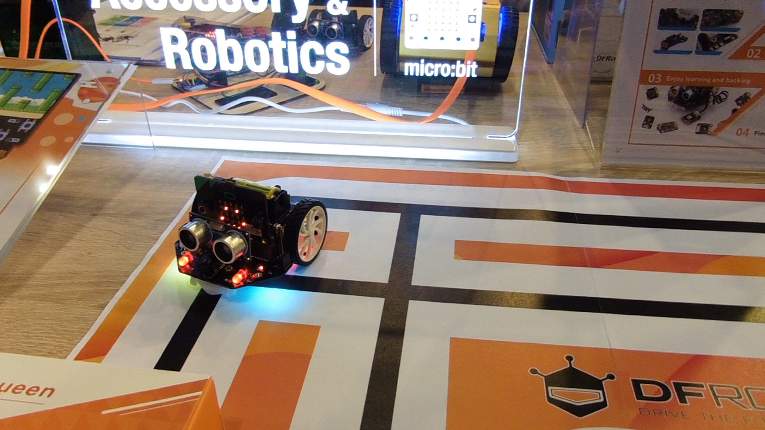 DF Robot by Terry Freedman.jpg