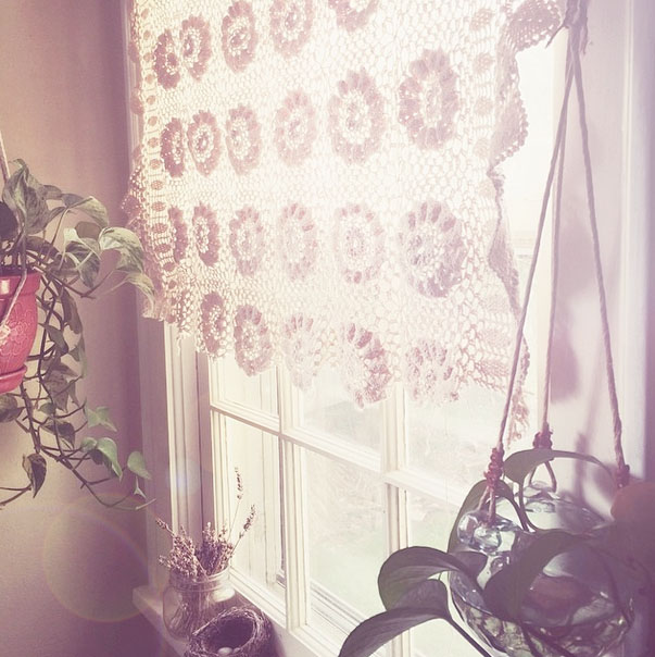 hanging plants.jpg